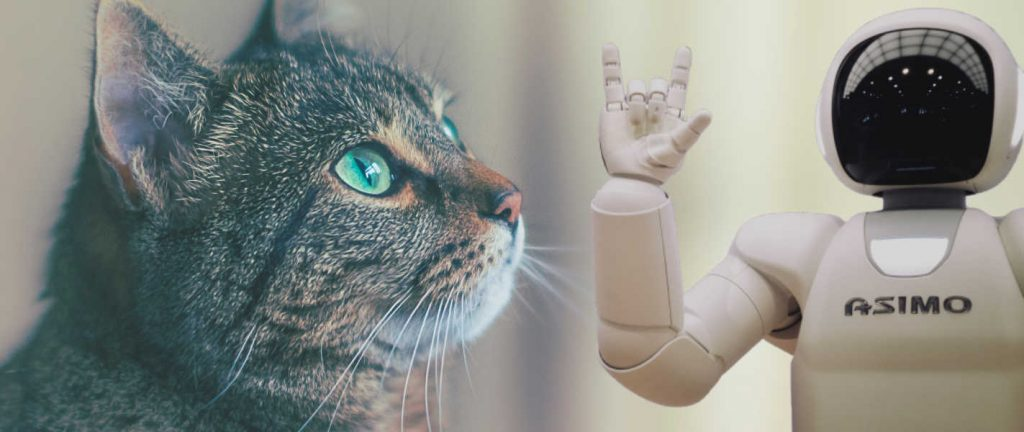 exemple d'un chat avec un robot doté d'intelligence artificielle